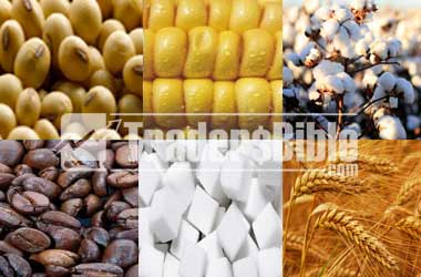 Agricultural Commodity Trading